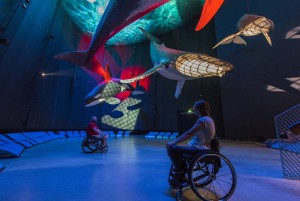 Just dive off. You can get close to the creatures of the oceans in the OZEANEUM in the Hansestadt Stralsund. The OZEANEUM is wheelchair accessible.