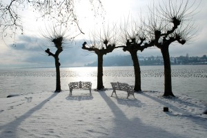 Lake Constance in the winter