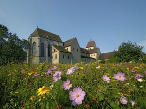 Meadow view of the abbey