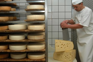 Traditional cheese production on the Allgäu Cheese Route