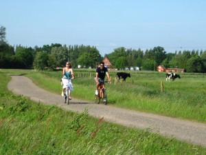 Cyclist travelling along the Lower Saxony Milk Route