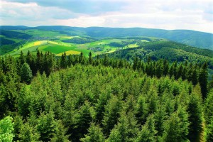 Spectacular panoramic views in every direction from Willingen, including this view from Dommel hill