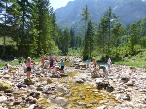 Ainringer Moos – bird paradise – low moor in the Berchtesgadener Land Biosphere