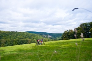 Mountain biker in the Harz Mountains