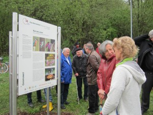 Fascinated visitors finding out about the geology of the region from the information boards in the geo nature park