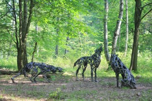 Wolves on the International Art Trail in the Hoher Fläming Hills Nature Park