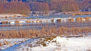 Winterlandschaft am Aartalsee