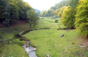 The Hafenlohr meanders through an idyllic meadow valley
