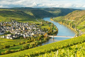 View of the Moselle from Leiwen