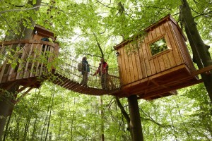 Treehouse hotel on the Weserbergland Trail