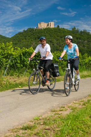 Neustadt, cyclists in front of Hambach Castle