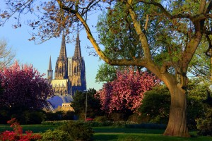 Cologne, Rhine Park and cathedral