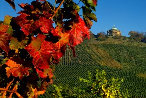 Stuttgart, vineyards and Rotenberg chapel